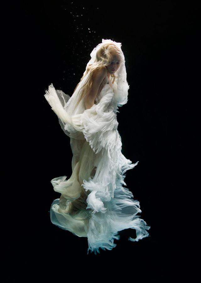 美しすぎる「幻想に咲く花」水中撮影の先駆者が捉えた神秘的な世界 21選
