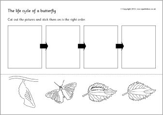 life cycle of a butterfly worksheet | Opposites Worksheet Cut and Paste http://www.sparklebox.co.uk ...