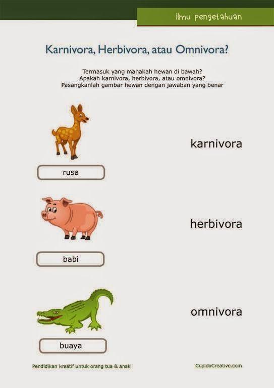 belajar ilmu pengetahuan anak, herbivora/karnivora/omnivora, untuk SD