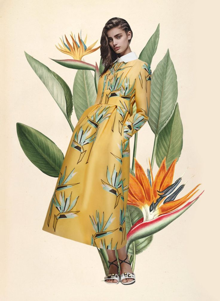 Miss Moss: Botanical Resort. Colour Mash Ups of Resort 2016 x Vintage Botanical Illustrations (Burberry Prorsum)