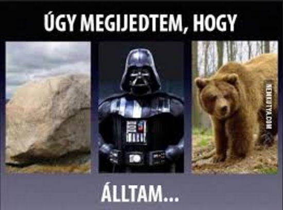 Kő-Véder-Medve