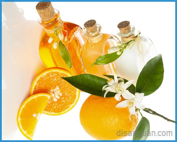 Khasiat dan Manfaat Minyak Bunga Jeruk (Neroli Essential Oil)