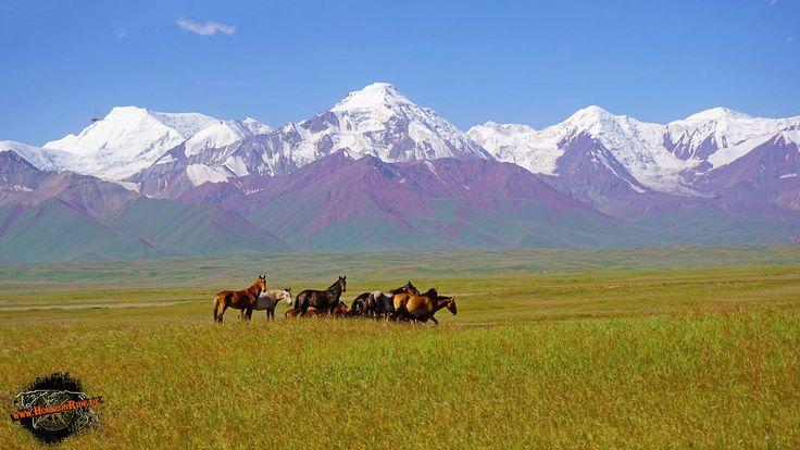Pamir Gebirge Murgab