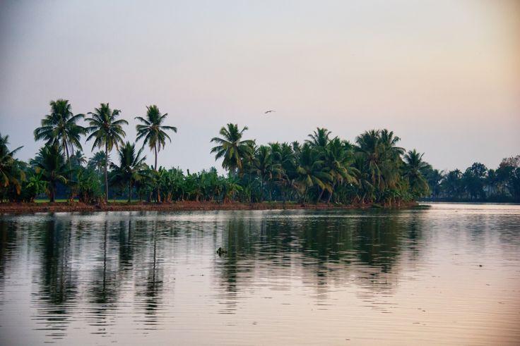 https://flic.kr/p/ncE7Bc | Kerala Backwater, Alleppey, Kerala, India
