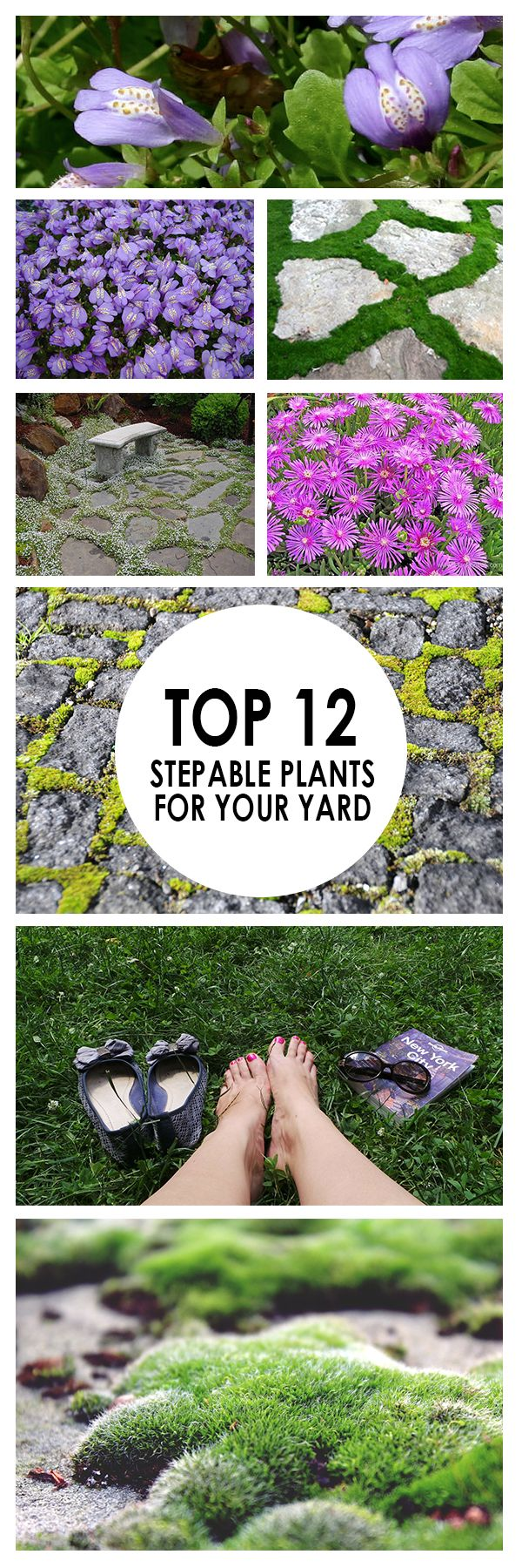 If you don't enjoy tip toeing around your yard to avoid your plants, it may be time to bring in some shrubs that tolerate foot traffic. Here are 12 stunning plants that stand up well when walked on.
