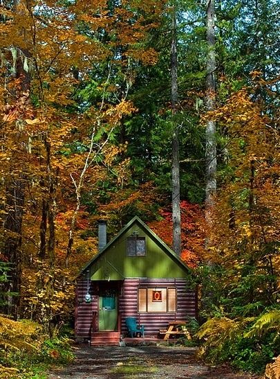 158 best images about old and new cabins on pinterest for Cabin in the woods oregon