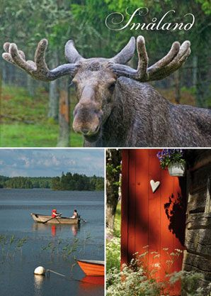 Småland is forests, meadows, pastures and glittering lakes. The forests extend for miles and miles, inviting hikes and picking of mushrooms and berries. You can experience absolute silence here, interrupted only by the chirping of birds and perhaps the tramping of the king of the forest – the elk. The red cottages and the pastures look exactly the same as they did then...