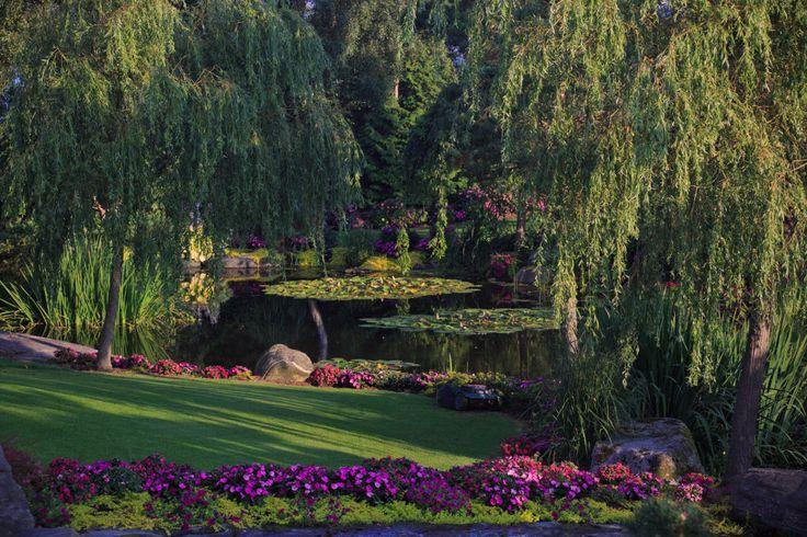 """The Amazing Garden, """"Flor og Fjære"""" in Stavanger - Norway."""