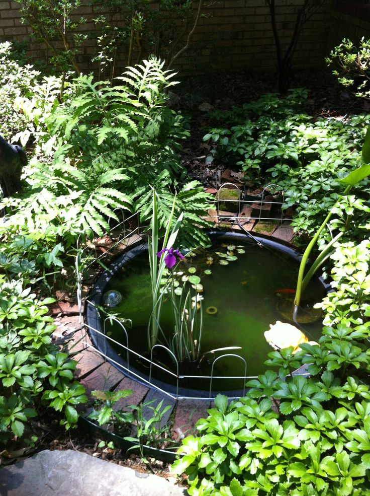 Garden Pond Installed Along The Front Walk