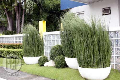 1000 images about balcony patio on pinterest small for Garden designs philippines