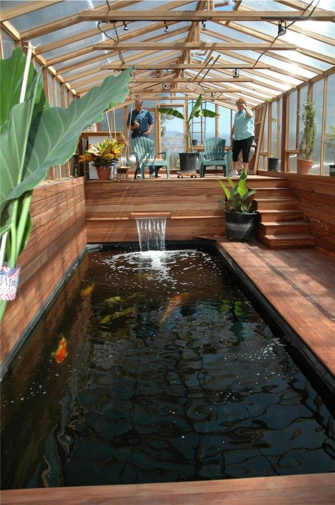 17 best images about indoor koi pond on pinterest for Greenhouse over swimming pool