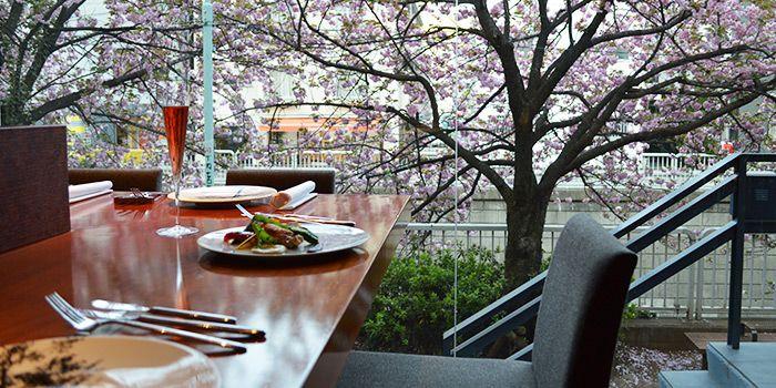 【目黒川周辺 編】お花見に最適!東京・桜の名所近くの隠れ家レストラン6選 - 一休コンシェルジュ RESTAURANT