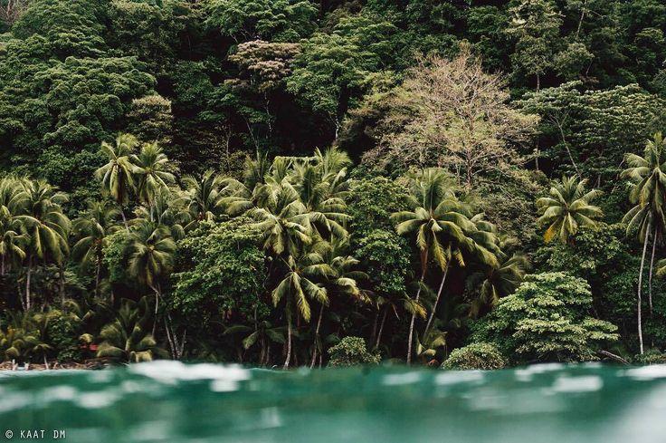 Playa pavones de costa rica island vibes adventure travel