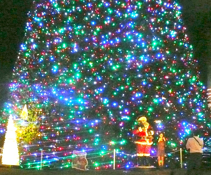 The famous 100Foot Christmas Tree in Delray Beach FL Its on