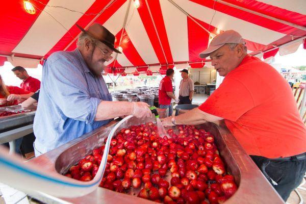 Strawberry Picking Long Island Open