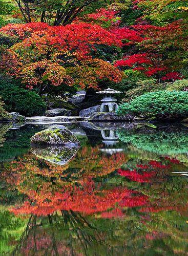 Japanese garden in autumn.