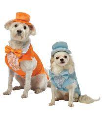 Dumb and Dumber Halloween Dog Costume - 1800PetSupplies.com