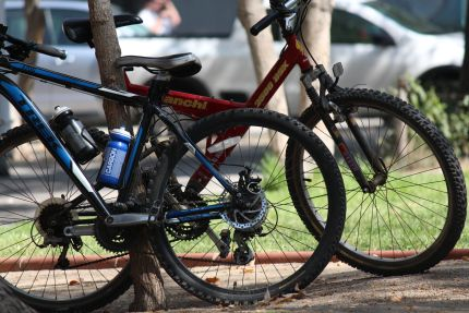 Puedes ir a @clementina_cafe en bicicleta y dejarla cerca de donde haces tu picnic.