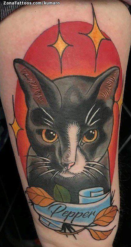 Tatuaje hecho por Cesar Augusto Lemos de Inglaterra (Reino Unido). Si quieres ponerte en contacto con él para un tatuaje/diseño o ver más trabajos suyos visita su perfil: https://www.zonatattoos.com/kumaro  Si quieres ver más tatuajes de gatos visita este otro enlace: https://www.zonatattoos.com/tag/38/tatuajes-de-gatos  Más sobre la foto: https://www.zonatattoos.com/tatuaje.php?tatuaje=110049