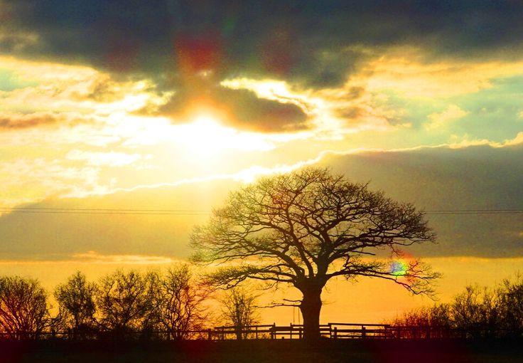 Wiltshire sunset photograph, British photography, Landscape photography by ByGaddArtandDesign on Etsy