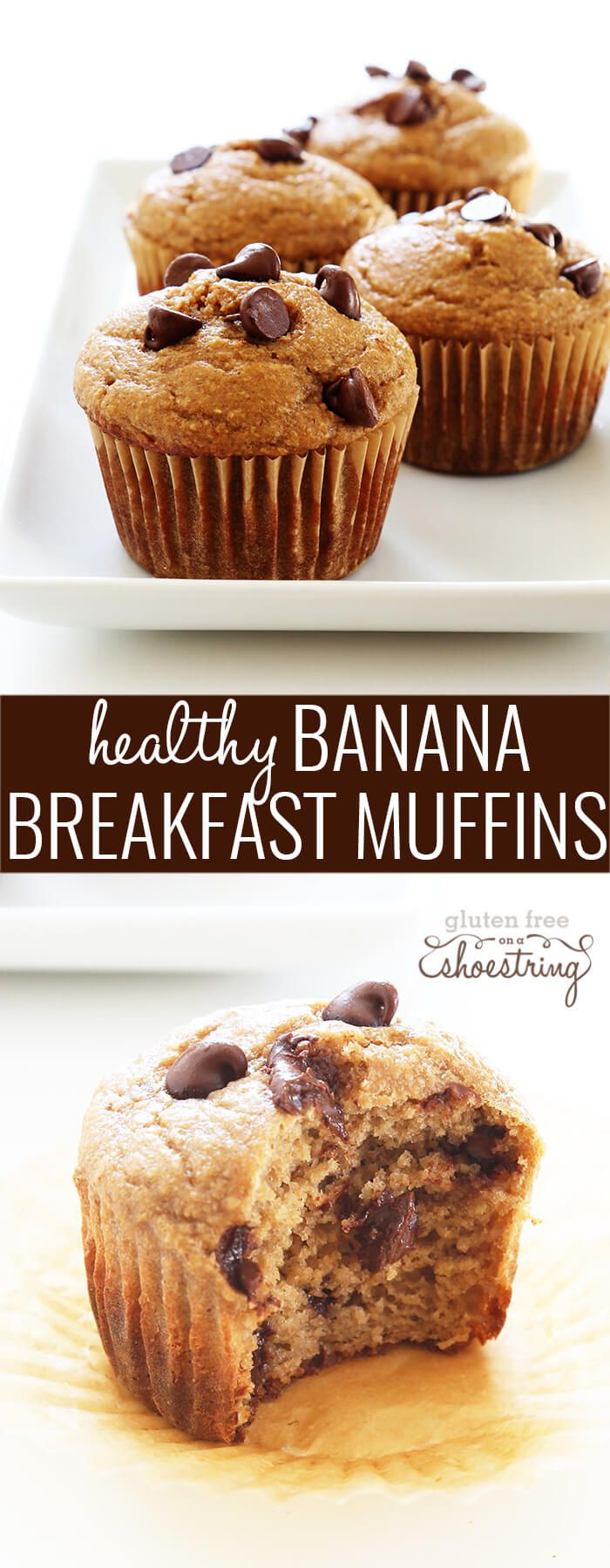 These super healthy gluten free banana breakfast muffins are made with no butter, no oil and no added refined sugars. Make the batter in the blender!