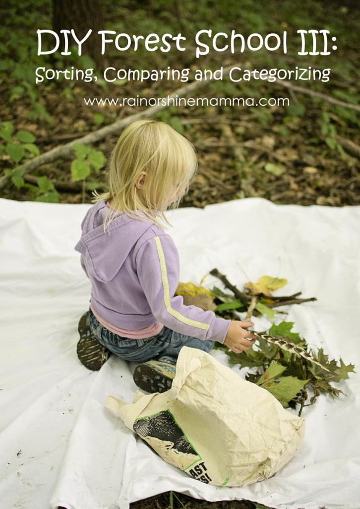 DIY Forest School III: Sorting, Comparing and Categorizing