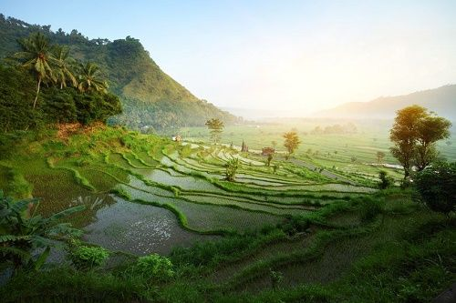 Best time to visit Bali - Travel and Tourism