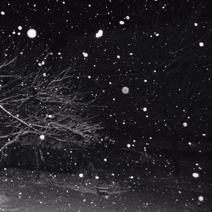 #ゆき  * #Snow #BlackandWhite