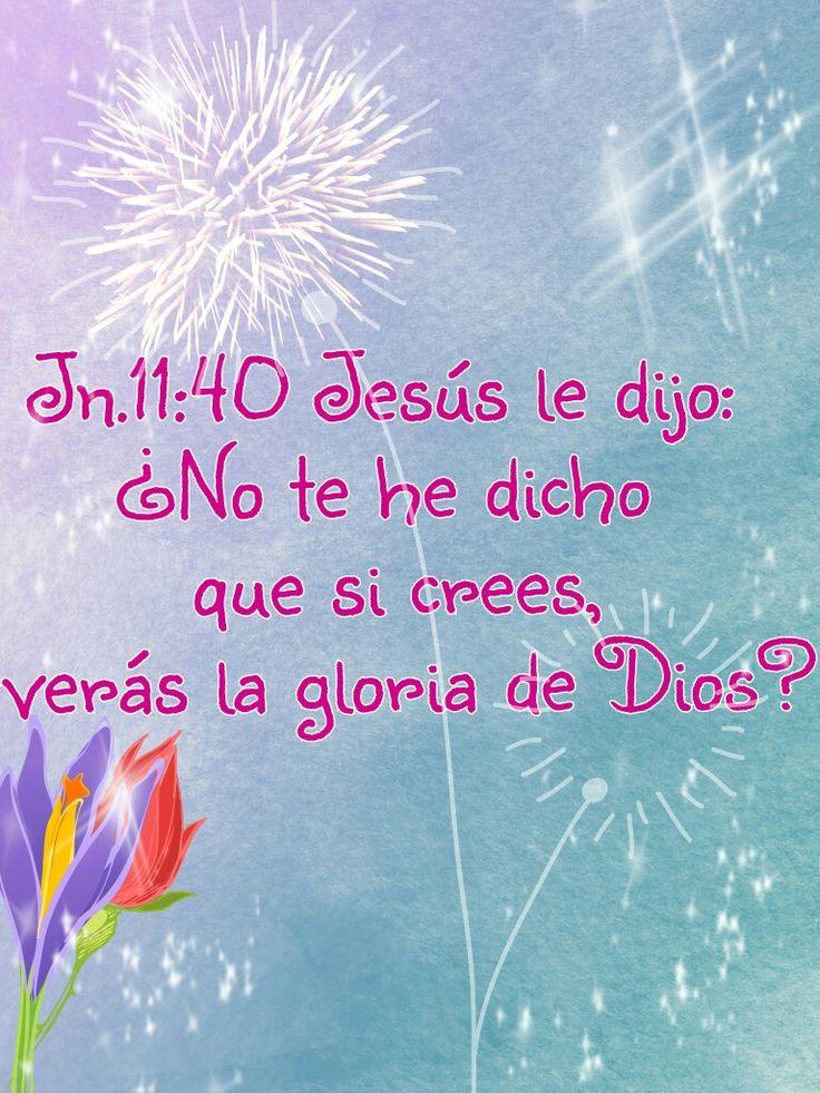Jn.11:40 Jesús le dijo: ¿No te he dicho que si crees, verás la gloria de Dios?