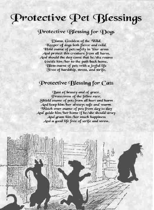 Protective pet blessings.