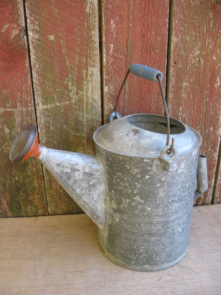 Vintage Galvanized Metal Fence Top Finial Fence Post: Vintage Galvanized Metal Watering Can With Brass Sprinkler