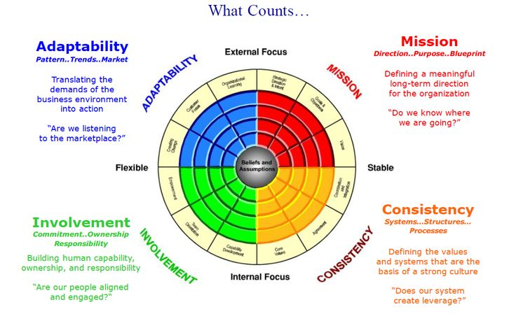 Organizational Development Contingencies