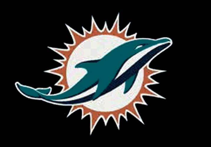 """Miami Dolphins 7' 8 x 10' 9 Team Spirit Area Rug: """"Get in the Game with this NFL Miami… #SportingGoods #SportsJerseys #SportsEquipment"""