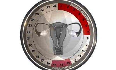 ¿Cuáles son los días fértiles para quedar embarazada? - Barcelona Alternativa