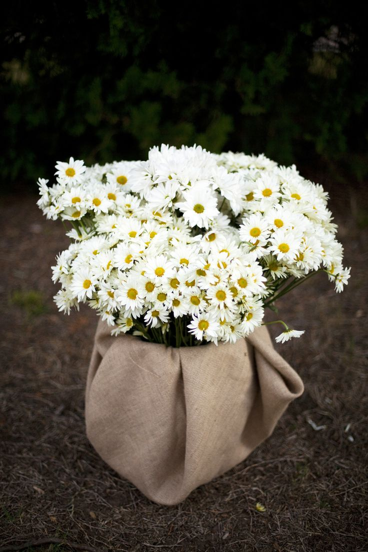 Jen, I like how they used burlap to cover whatever flowers are in