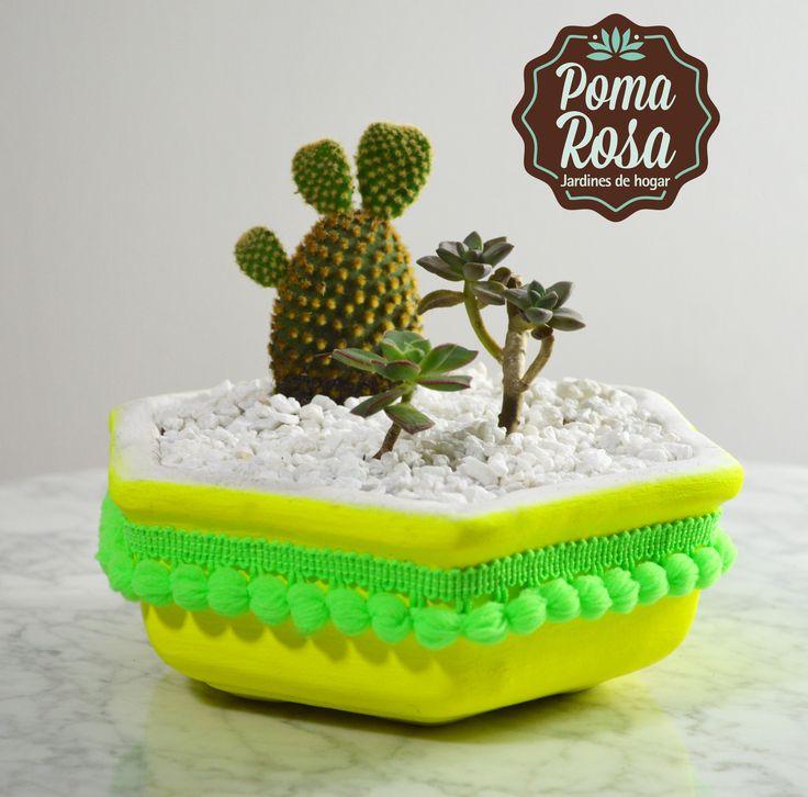 Un pequeño mundo lleno de mucha vida y color! Hermoso terrario con Suculentas y Cactus!  Materas unicas hechas por nosotros!