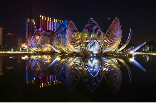 lotus building china - Szukaj w Google