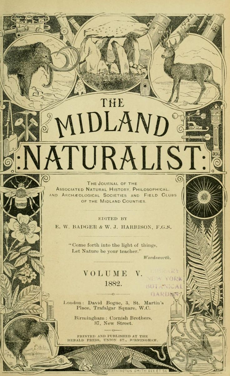 1882 volume of the Midland Naturalist, complete with awesome vintage illustrations.