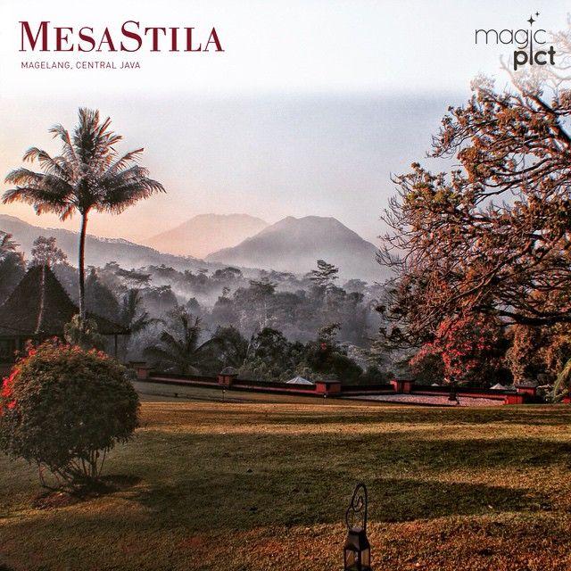 #MesaStila_vacation