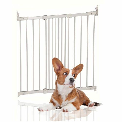 Archie Oscar Basingstoke Wall Mounted Pet Gate Pet Gate Pet Barrier Pets