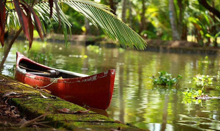 """The Backwaters Rendezvous.  This #bout offers you the #best #sights of #southern #India. The #tea plantation of #Munnar will make you feel like """"Alice in the #Wonderland"""" accompanied by #rejuvenating #ayurvedic #messages at #Kumarakom will make you lose yourself in the #nature. Followed by a stay on #houseboats in the #backwaters of #Alleppey, which promises you the most #romantic silent sounds of still water. #boutindia #travel #india"""