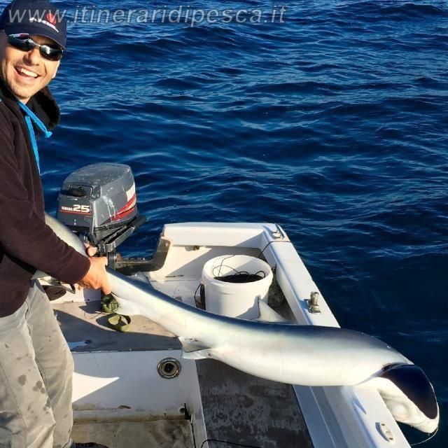 Napoli: bolentino con squalo finale pesca fishing