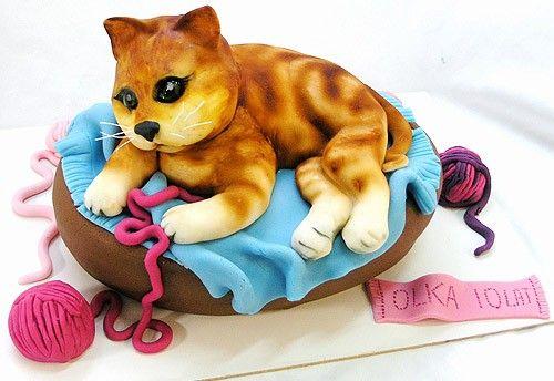 Słodki kociak - tutorial | Mistrz Branży - interaktywny portal dla piekarzy, cukierników, lodziarzy.