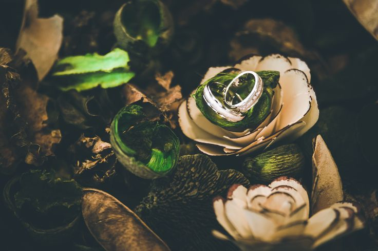 Wedding Bands - Engagement Rings - Wedding Photography Alex Grigore Nature #weddings #weddingphotography