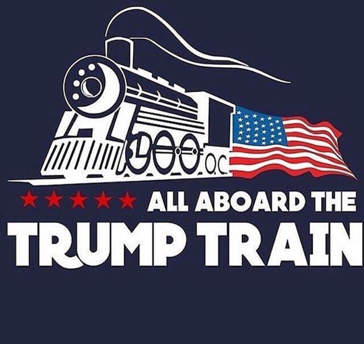 GET ON BOARD, OR GO BACK TO THE COUNTRY YOU CAME FROM. AMERICA FIRST! CALLING ALL PATRIOTS TO DEFEND OUR NATION!