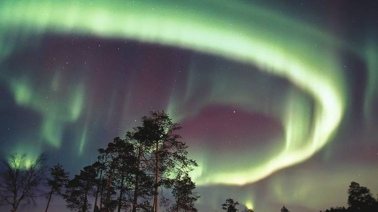 Santa's villiage and northern lights!!!