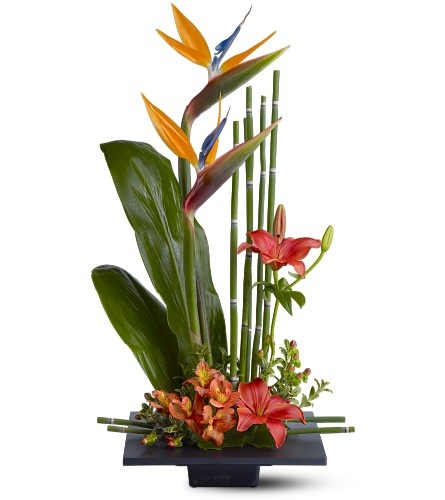 Tropical!Floral Design, Tropical Flower, Flowerarrangements, Flower Arrangements, Fresh Flower, Bird Of Paradise, Floral Arrangements, Birds Of Paradise