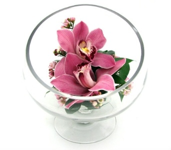 Someone is sure to feel special when you send this modern arrangement or cymbidium orchids and wax flower in this exquisite footed glass bowl.