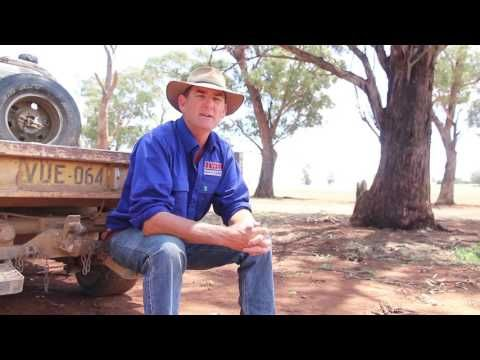 Champions Of Change - Farmers and Their Paddock Trees - YouTube