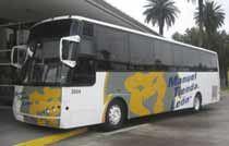 Manueal Tienda Leon Bus